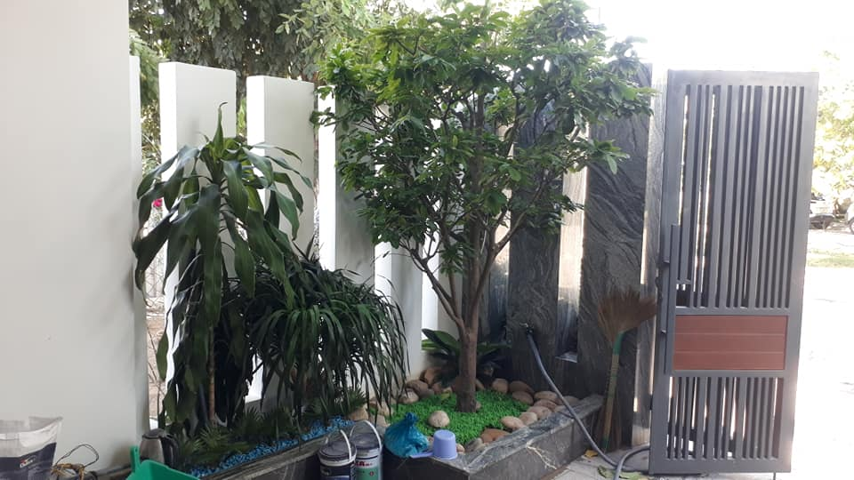 Khuôn viên sân vườn nhà An Phú Sinh Quảng NGãi
